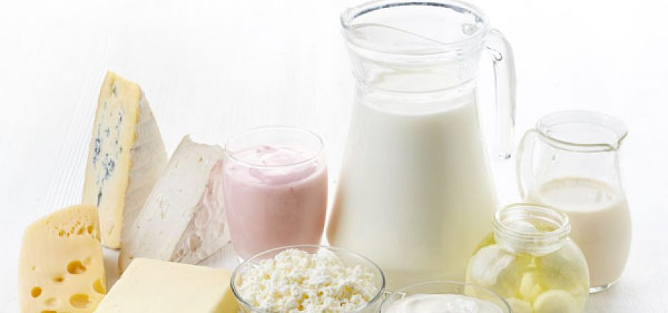 Dairy Farm and Its Products