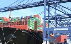 Invested in Container Ships